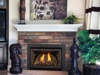 Chaska 25 Gas Fireplace Insert | Gas Fireplaces | Kozy Heat
