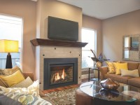 Chaska 34 Gas Fireplace Insert