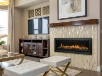 Slayton 60 Direct Vent Gas Fireplace | Contemporary Gas ...