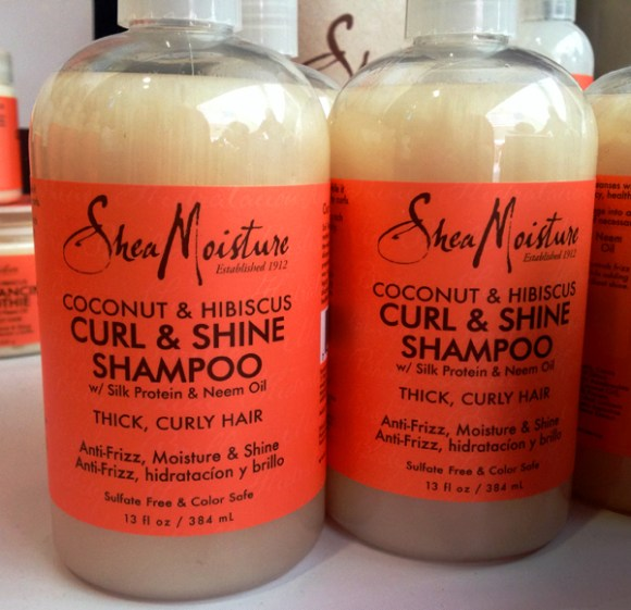 Shea-Moisture-Southern-Womens-Expo-Memphis-March-2014-KPFUSION13