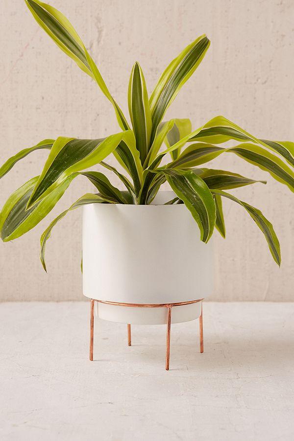 Adelphi 6 inch Planter