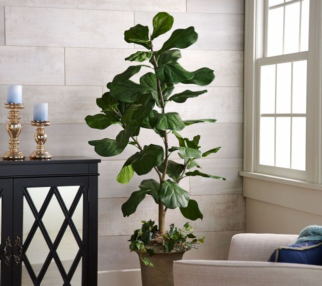 5' Faux Fiddle Leaf Tree in Starter Pot by Valerie