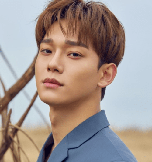 Chen's future in question with marriage news & fan reactions