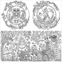 Anti-Stress Colouring Book : Enchanted Forest