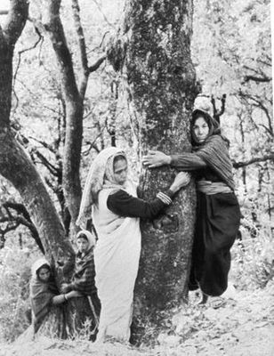 Three environmental agitations inspired by the Chipko movement