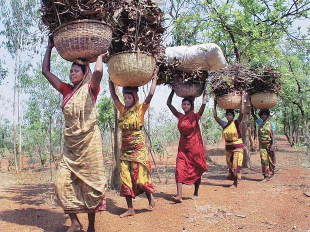 Chhattisgarh govt cancels tribal rights over forest lands #WTFnews
