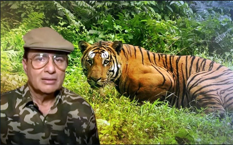 Killing tigress- Avni  violation of SC order