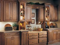 Great Modern Kitchen Cabinets for Less