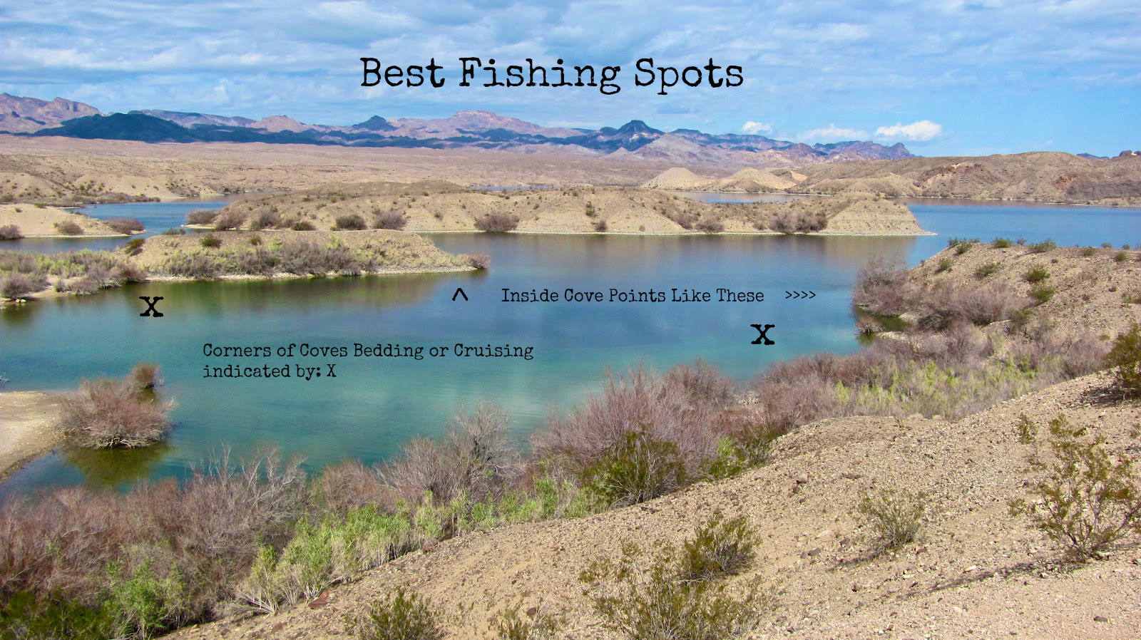 Fishing lake mohave smallmouth and largemouth bass for Good fishing places near me