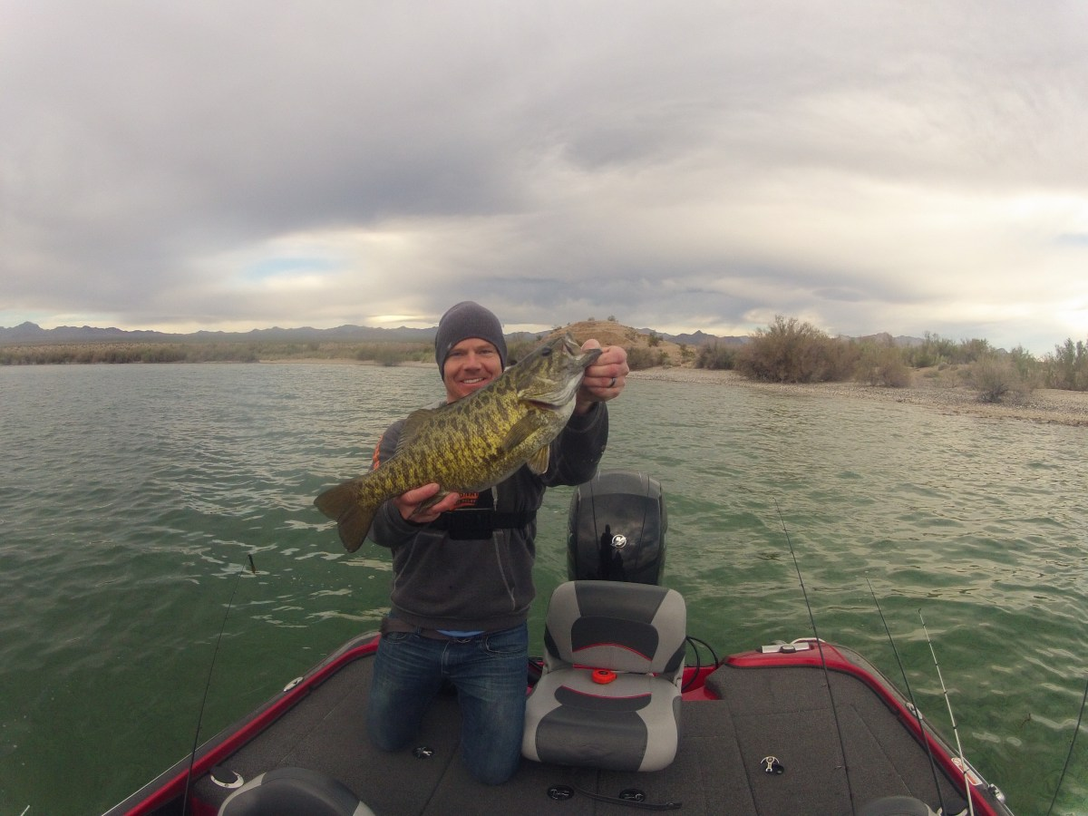 Fishing Lake Mohave - Bass Fest!