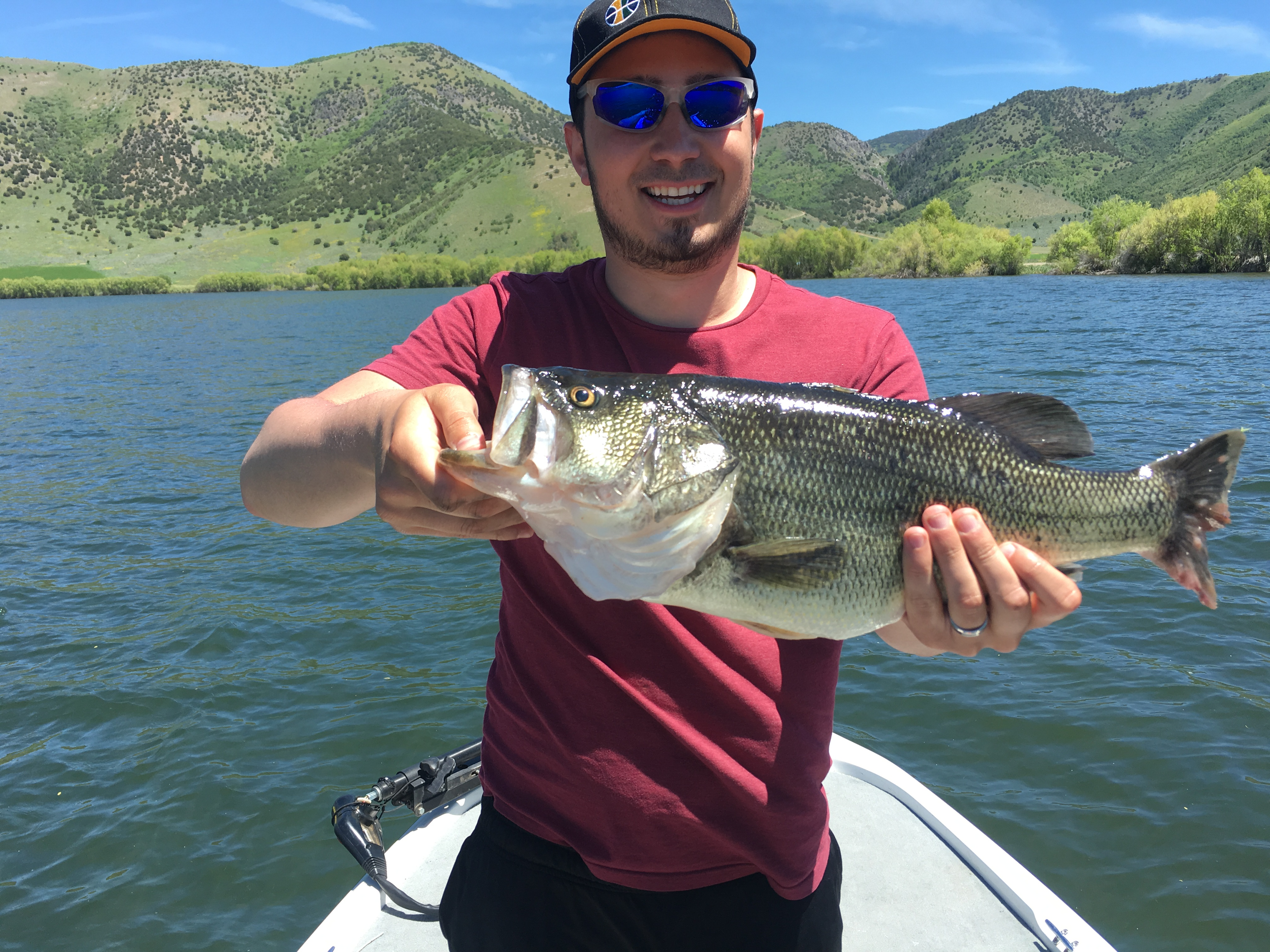 How weather conditions affect bass fishing knowing what for Fishing weather report