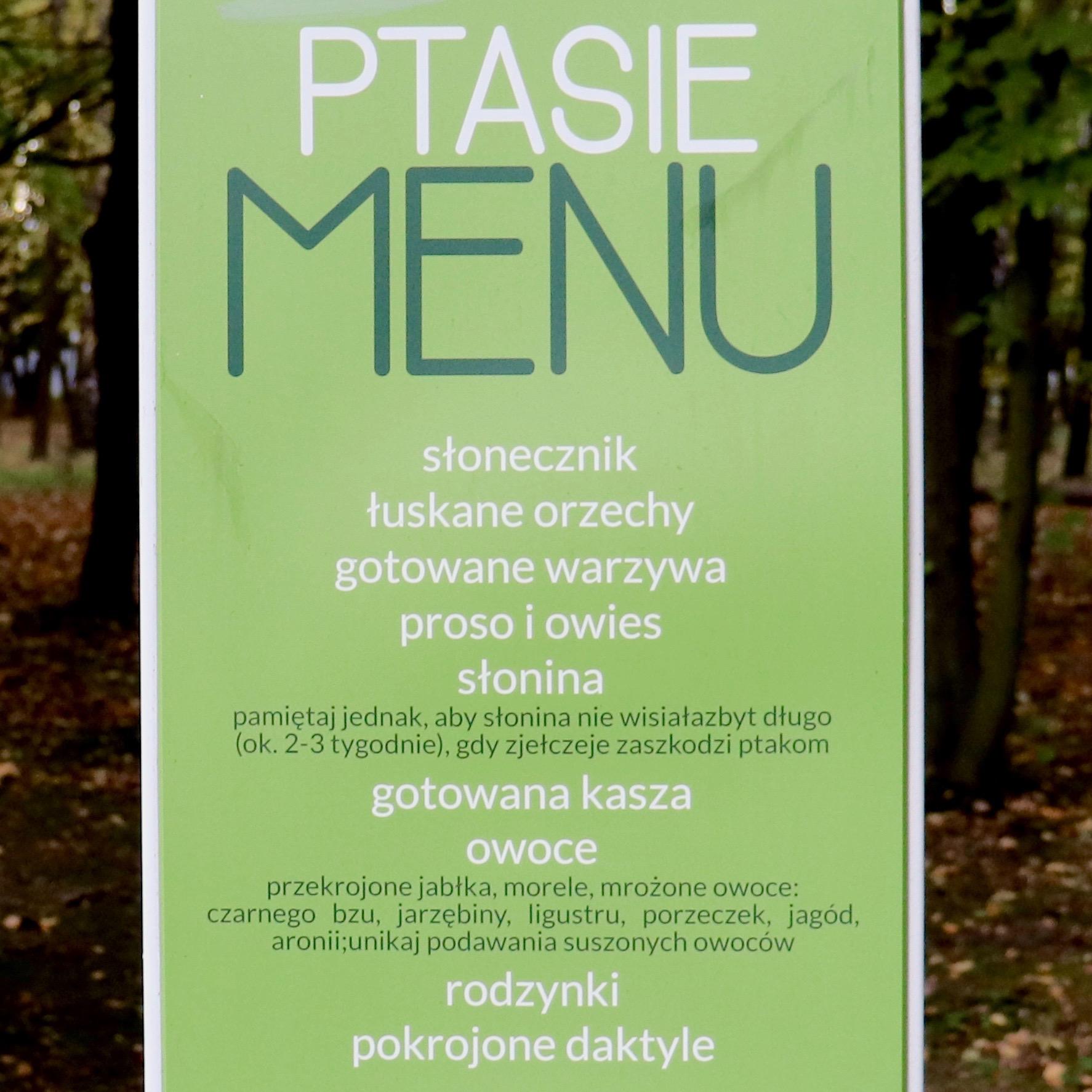 ptasie menu
