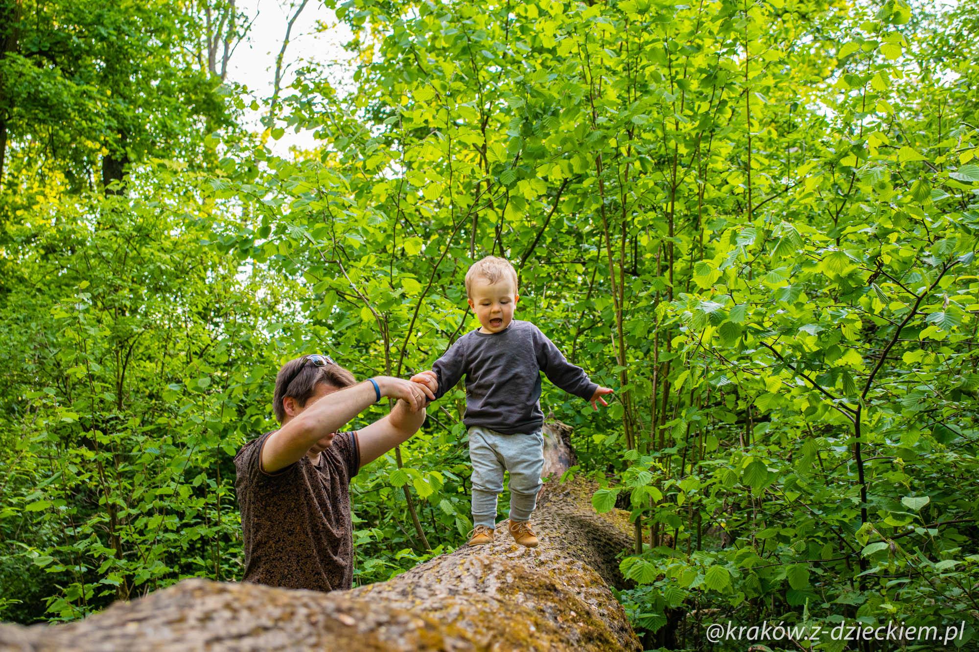 leśny plac zabaw