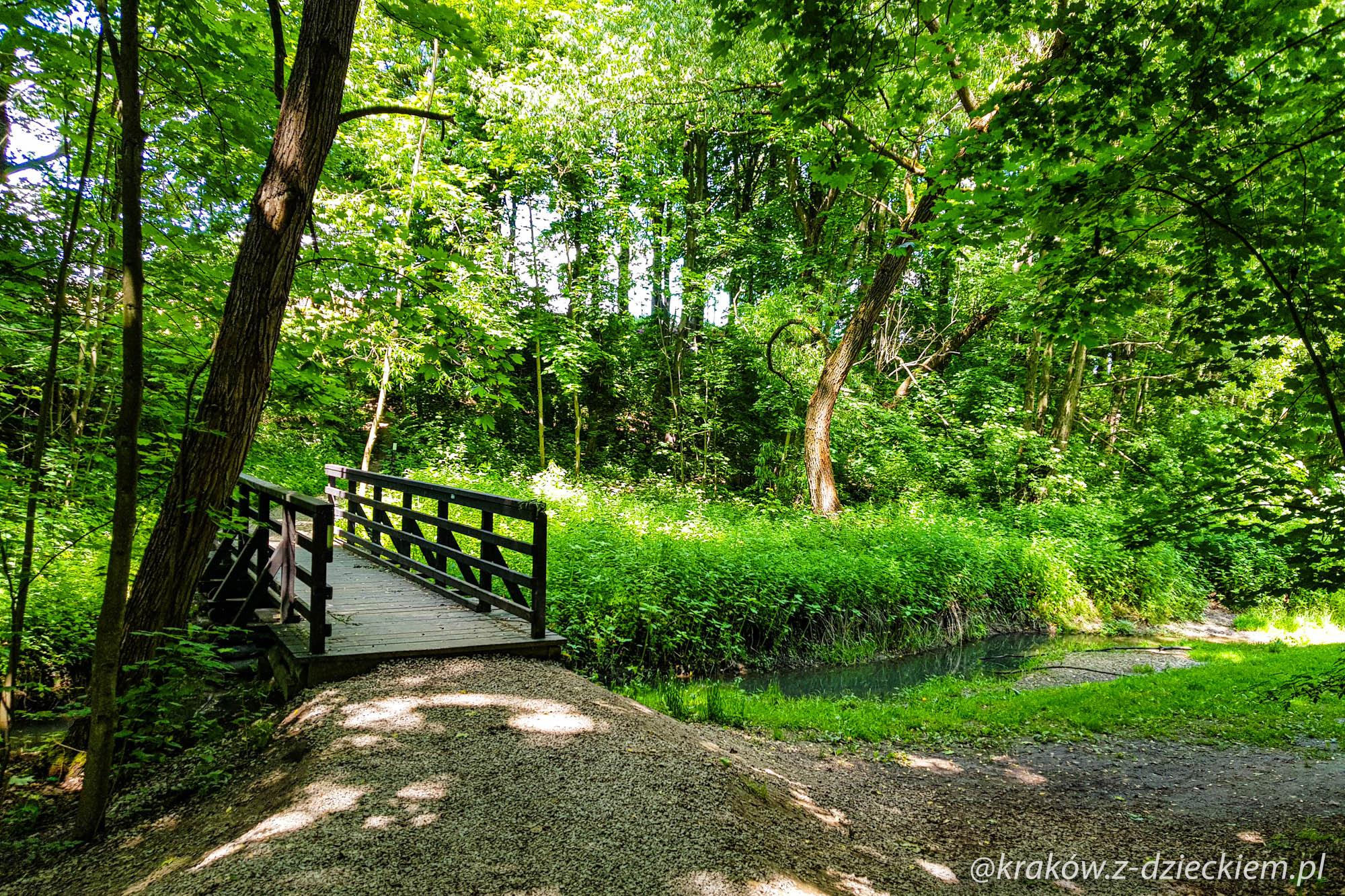 most w lesie w Witkowicach