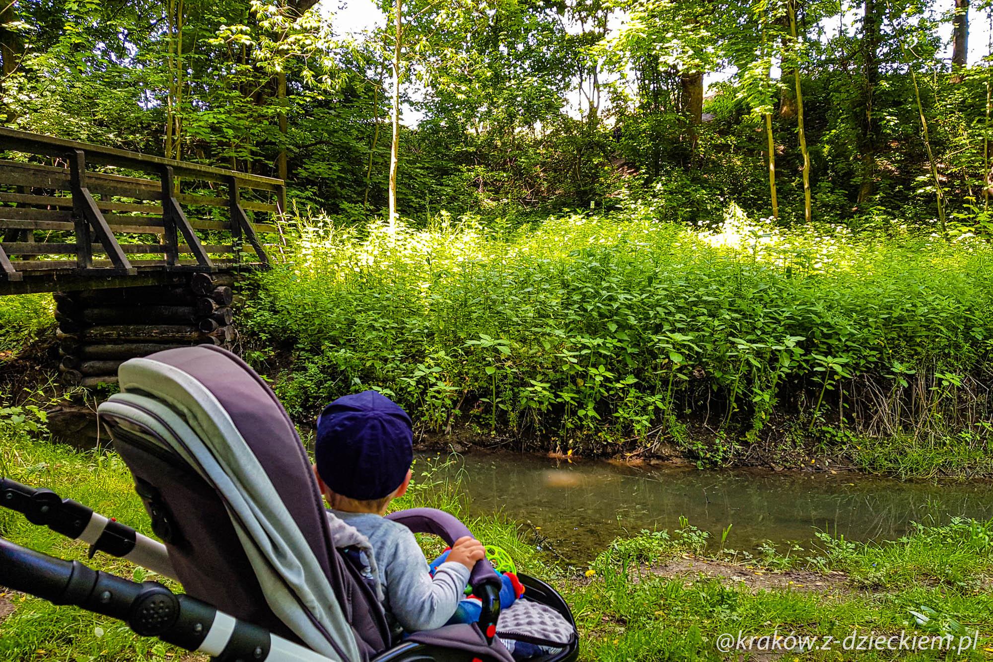 wózek w lesie witkowickim