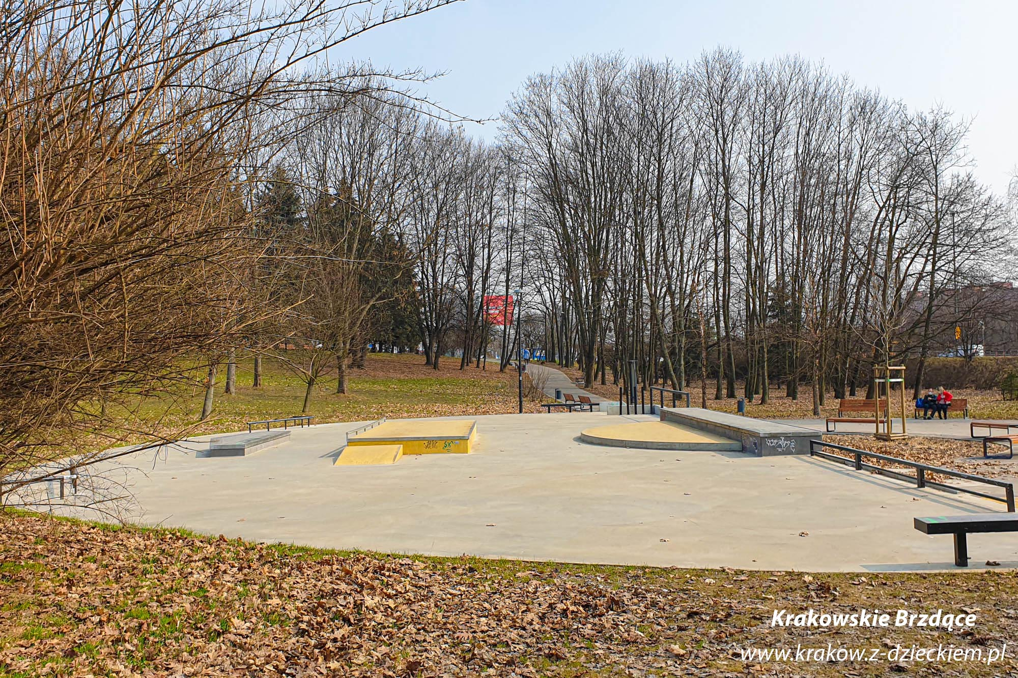 skate park, Park Tysiąclecia