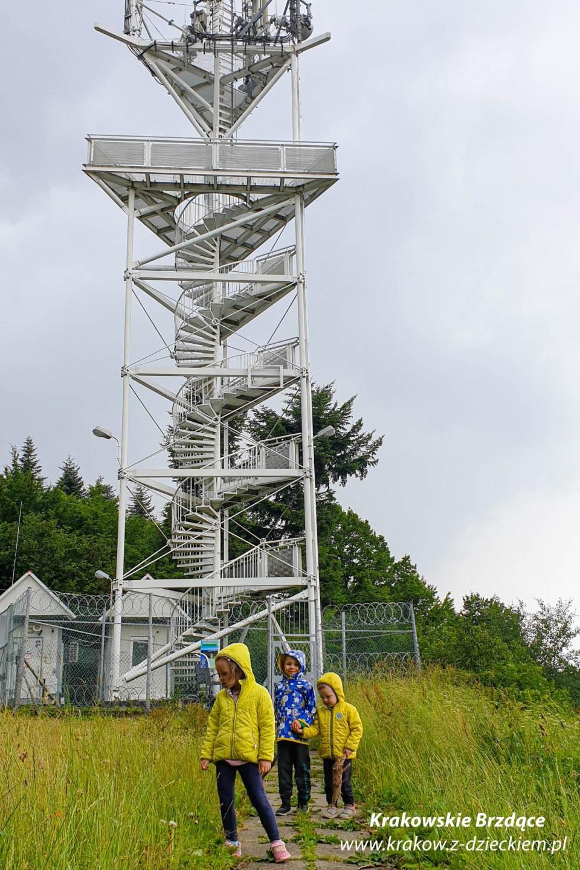 wieża widokowa góra chełm