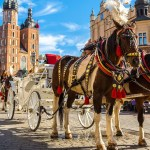 Activities for families with kids in Krakow