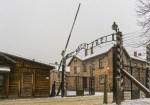 Vi har satt ned prisene på utflukter til Auschwitz og Saltgruvene