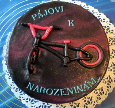 Dort pro bikery
