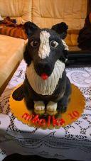 3D pes