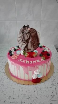 Dort s malovaným koněm