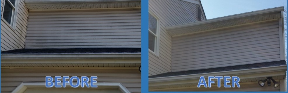 Cleaning mold and mildew from siding