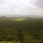 Janapav Kuti Forests