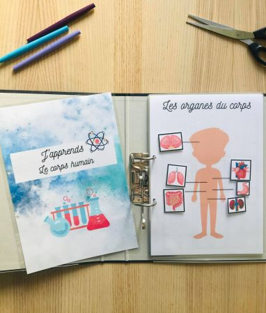 DIY quiet book du corps humain
