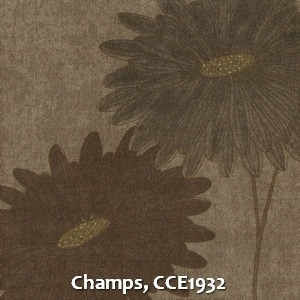 Champs, CCE1932