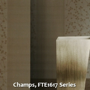 Champs, FTE1617 Series