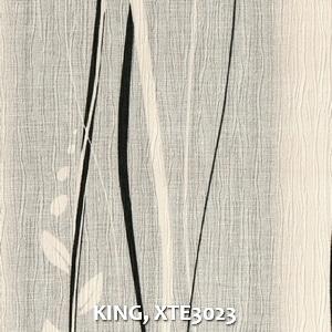KING, XTE3023