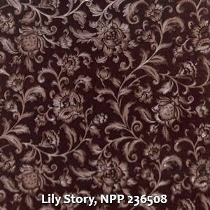 Lily Story, NPP 236508