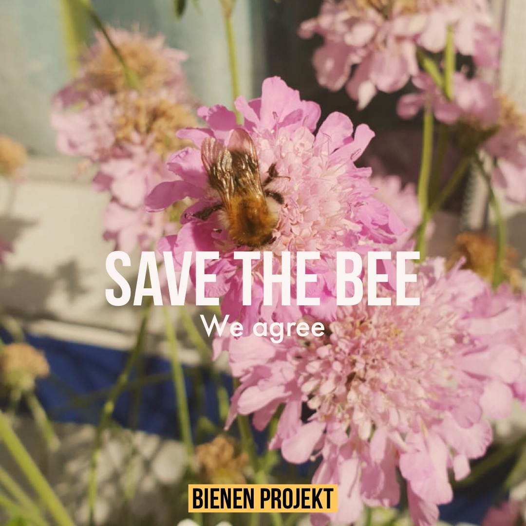 Save the bee, we agree!