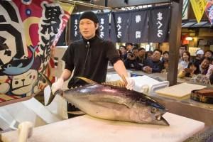 Japan (2015) - Thunfisch Show