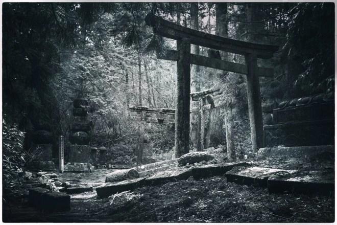 Japan (2015) - Kōya-san - Waldfriedhof