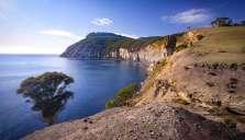 Australia - Tasmania - Maria Island - Fossil Cliffs