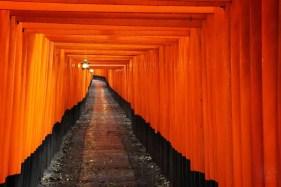 Japan - Kyoto - Kyoto - Rote Torii 2