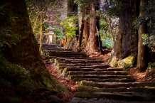 Japan - Wakayama - Nachi - Treppenweg 02