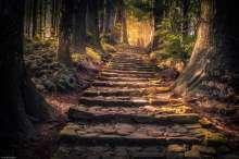 Japan - Wakayama - Nachi - Treppenweg 03