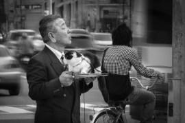 Street Photography - Japan - Cat Taxi