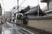 20100427_063521-IMG_7255_ji copy