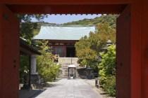 20100503_052633-IMG_8420_ji copy