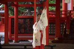 20100508_090350-IMG_0283_ji copy