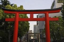 20100508_091326-IMG_0323_ji copy
