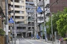 20100512_085829-IMG_1040_ji copy
