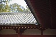 20140117_061017_IMG_0387_ji copy