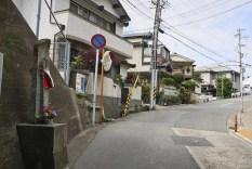 IMG_0349_ji copy