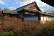 IMG_1446_ji copy
