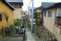 IMG_3547_ji copy